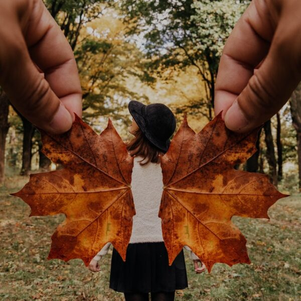 girl with wings out of autumn leaves